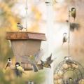 Linnut2valmis